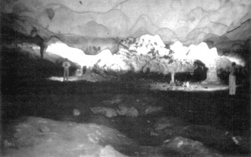 photograph of a portion of the main inner chamber of salt pond cave long island bahamas see map fig 10b floor and ceiling show typical phreatic